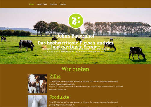 chilly.domains Homepage Baukasten Design 91