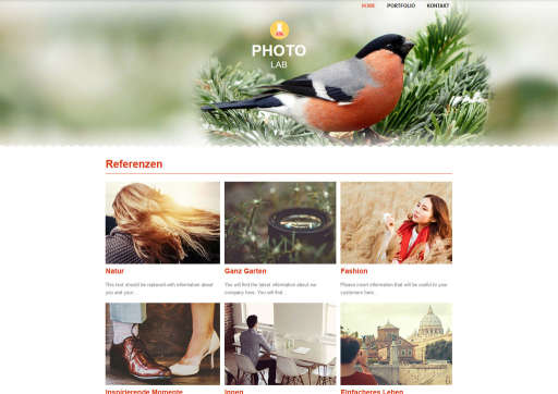 chilly.domains Homepage Baukasten Design 141